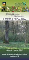 86_Boschi_pianura