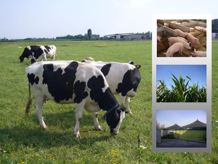 foto biogas