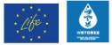 Wstore Life+Logo