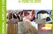 Rapporto sulle Bioenergie in Veneto 2010