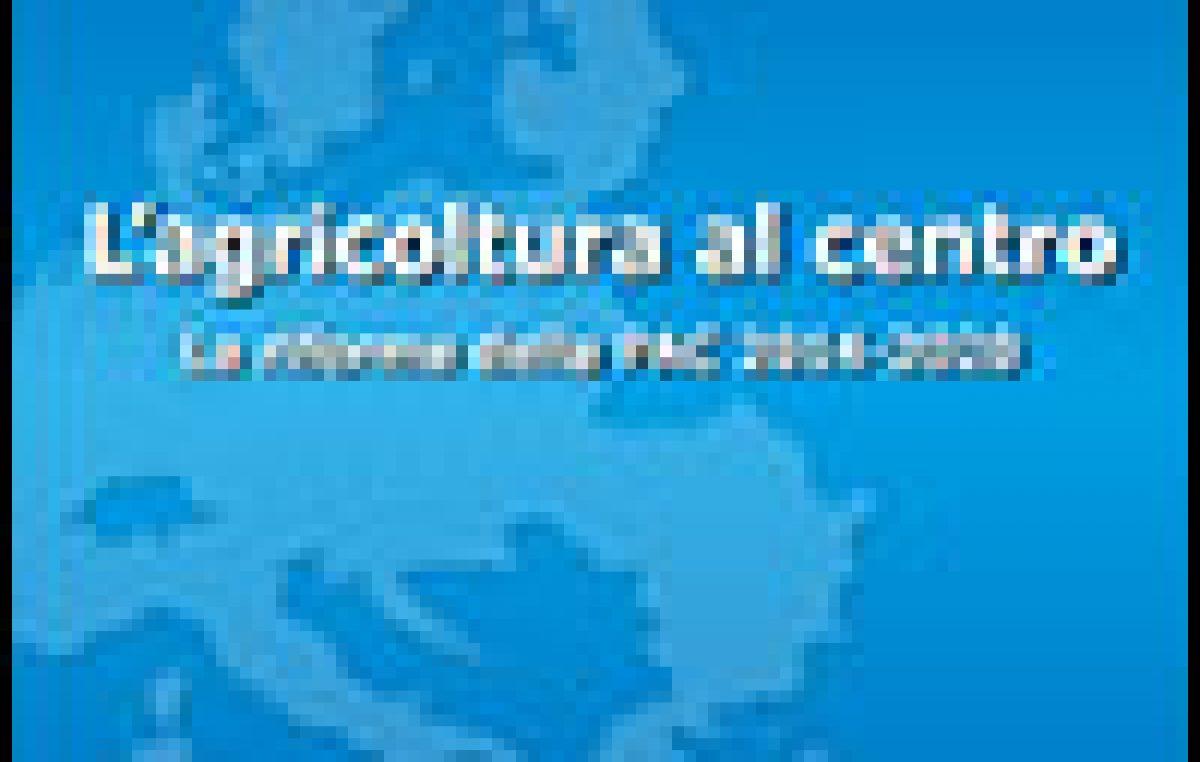 Quaderno Europe Direct Veneto n. 15