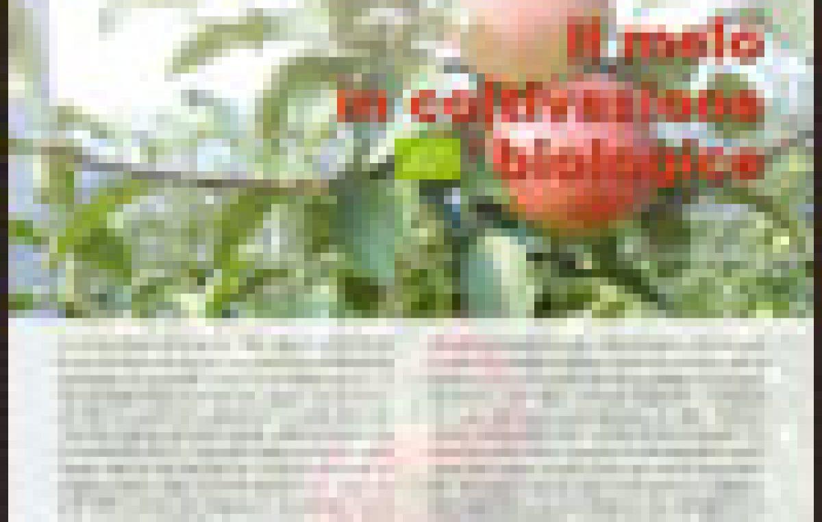 Il melo in coltivazione biologica