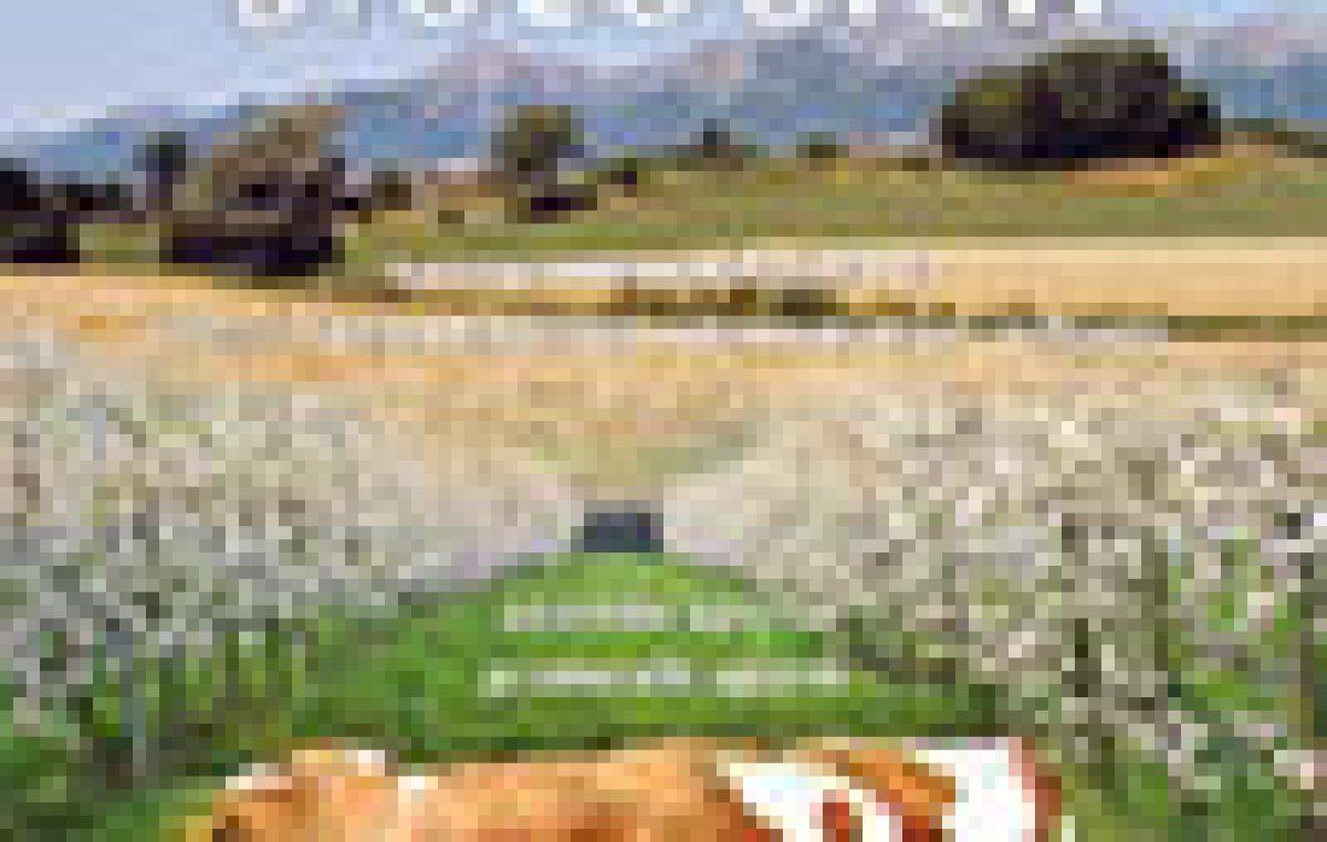 """Sperimentazioni 2014 per l' Agricoltura biologica – Azienda pilota e dimostrativa """"Villiago"""" – Aziende aperte protocolli aperti"""