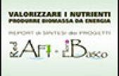 Valorizzare i nutrienti, produrre biomassa da energia  – Report di sintesi progetti RedAFI e FloroBaSco