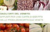 Dagli orti del Veneto: appunti per una carta d'identità delle produzioni orrticole venete