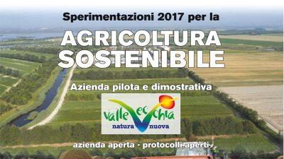 """Progetto LIFE+ AGRICARE – Sperimentazioni 2017 per l'Agricoltura sostenibile – Azienda """"ValleVecchia"""""""