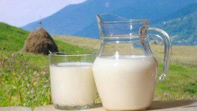 Prezzo del latte nella cooperazione veneta: più alto della media