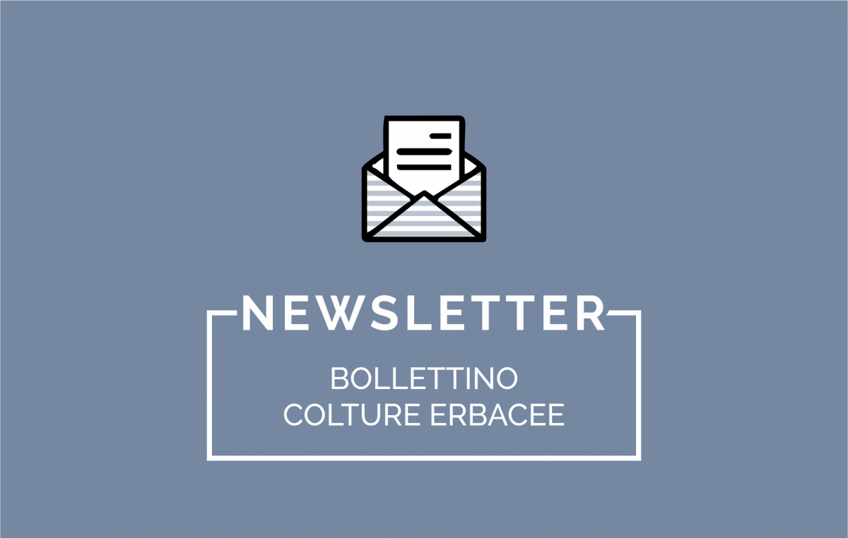 Bollettino Colture Erbacee n. 01/2016 del 07 gennaio