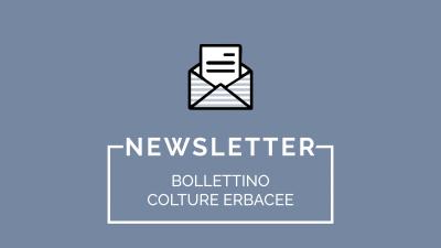 Bollettino Colture Erbacee n. 3/2018 del 05/02/2018