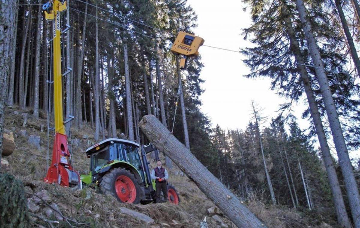 """Veneto Agricoltura porta le politiche forestali ad """"Agrimont"""""""
