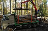 Domani a Longarone (BL) Boschi e foreste sotto i riflettori