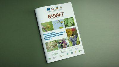 Protocolli di conservazione in Veneto delle antiche varietà viticole
