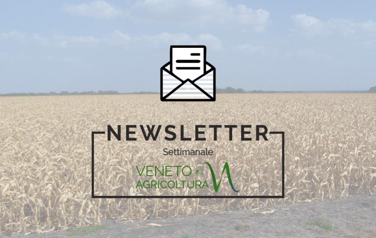 NEWSLETTER AGRICOLTURA VENETA n.5 / 06 Febbraio 2019