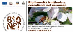 BIONET 24 maggio 2018 Buttapietra Biodiversità frutticola e cerealicola nel veronese