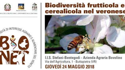 Biodiversità frutticola e cerealicola nel veronese