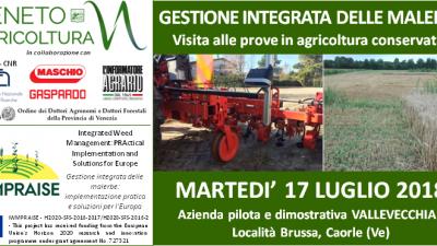 GESTIONE INTEGRATA DELLE MALERBE – Visita alle prove in agricoltura conservativa
