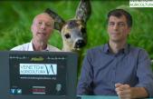 10 Radio Veneto Agricoltura – Fauna Selvatica Nel Veneto