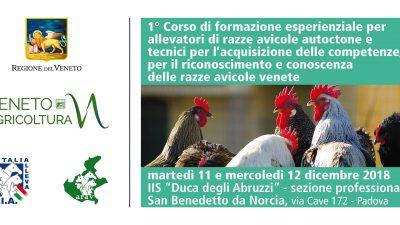1° Corso di formazione esperienziale per allevatori di razze avicole autoctone venete