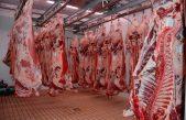 Allevamento e macellazioni di capi bovini, suini e avicoli in Veneto