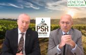 36 Radio Veneto Agricoltura – Cosa c'è da sapere sul PSR