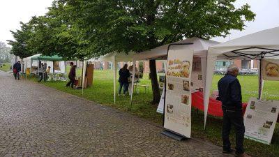 """""""BIODI:VE"""", Giornata Nazionale della Biodiversità Agraria e Alimentare"""