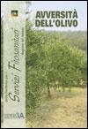 avversità olivo