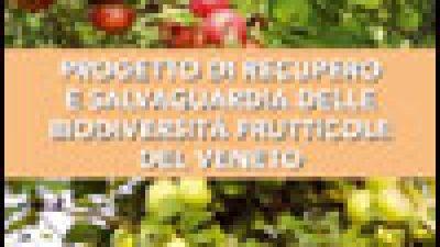 Progetto di recupero e salvaguardia delle biodiversità frutticole del Veneto – Quaderno n.2