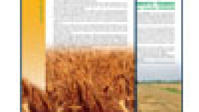 Frumento duro – Confronto varietale 2008/2009