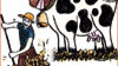 PSR 2007-2013 Misura 215 – Azione 4: Benessere animale – incremento della lettiera permanente nell'allevamento delle bovine da latte