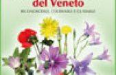 Piante alimurgiche del Veneto – Riconoscerle, coltivarle, gustarle