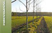 Agroforestazione – Produrre con gli alberi per un'agricoltura differente