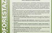La Misura 222 del Piano di Sviluppo Rurale del Veneto: primo impianto di sistemi agroforestali su terreni agricoli