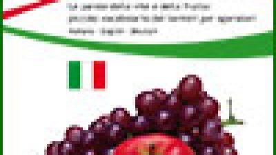 Le parole della vite e della frutta: piccolo vocabolario dei termini per operatori