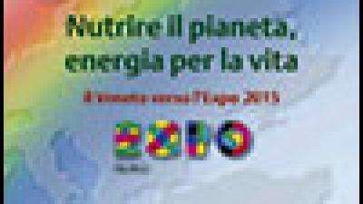 Quaderno Europe Direct Veneto n. 13