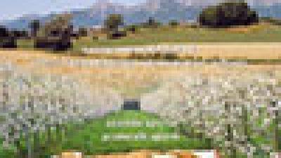 """Agricoltura Sostenibile – Le sperimentazioni 2010 presso l'Azienda pilota e dimostrativa """"Diana"""""""