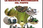 La raccolta meccanizzata del pioppo – Manuale di campo