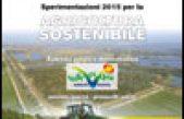 """Sperimentazioni 2015 per l'Agricoltura Sostenibile – Azienda """"Vallevecchia""""- Aziende aperte, protocolli aperti"""