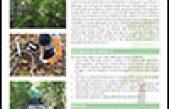 Progetto RedAFI – Aree Forestali di infiltrazione e riduzione di azoto da digestati