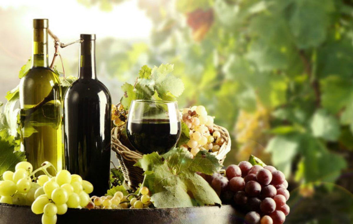Nel 2016 fatturato record per l'export di vino veneto