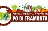 """ORTOFLORICOLO, 30 ANNI D'INNOVAZIONE A """"PO DI TRAMONTANA"""""""