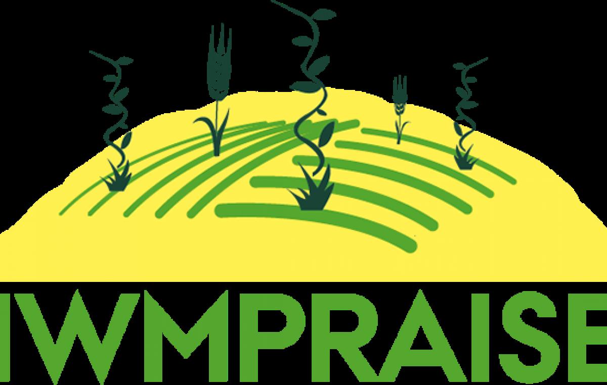 IWMPRAISE