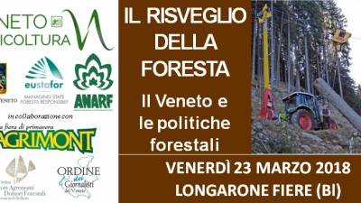 """Convegno """"Il risveglio della foresta: il Veneto e le politiche forestali"""""""