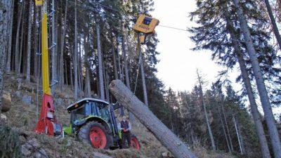 """Veneto: 465.000 ettari di foreste da """"far fruttare"""""""
