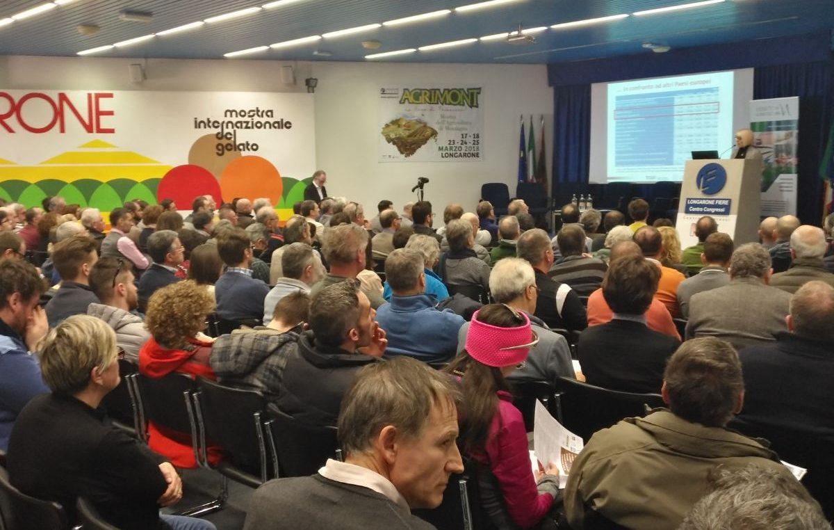 """FORESTE VENETE: UN PATRIMONIO DA """"FAR FRUTTARE"""""""