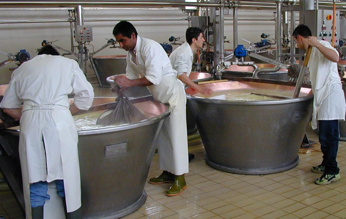 Formaggi DOP veneti: i caseifici diversificano la produzione