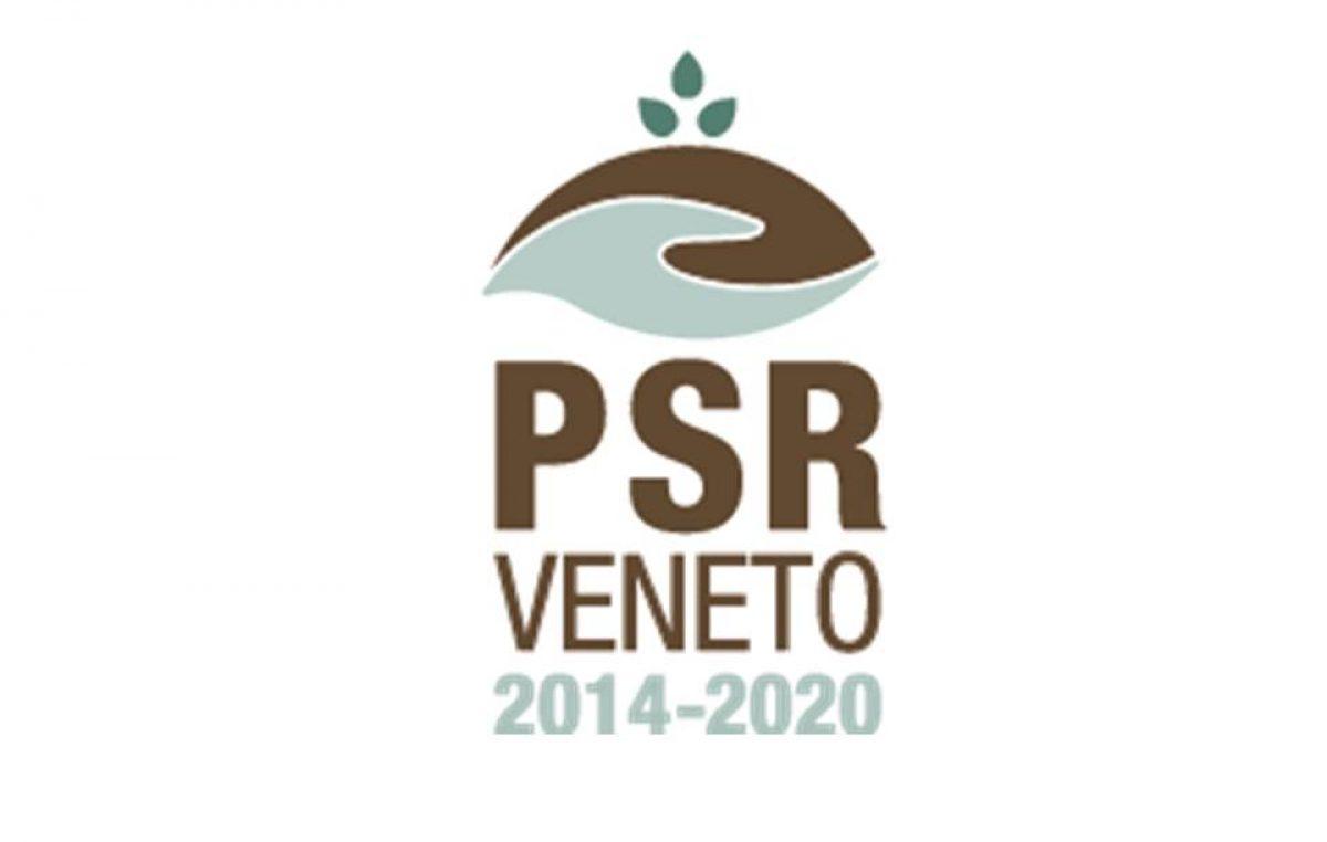 PSR, nuovi bandi per oltre 90 mio/€