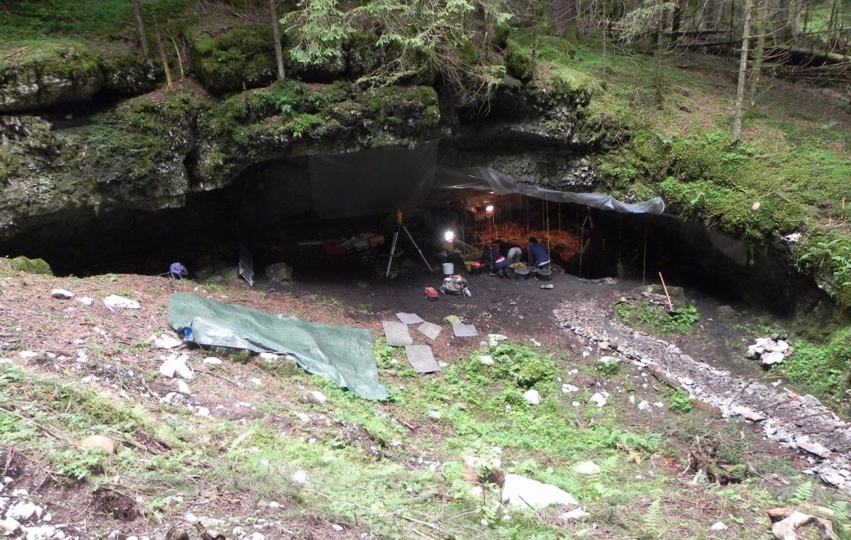 Alla ricerca dell'uomo del Paleolitico: in Cansiglio si scava ancora dopo 25 anni