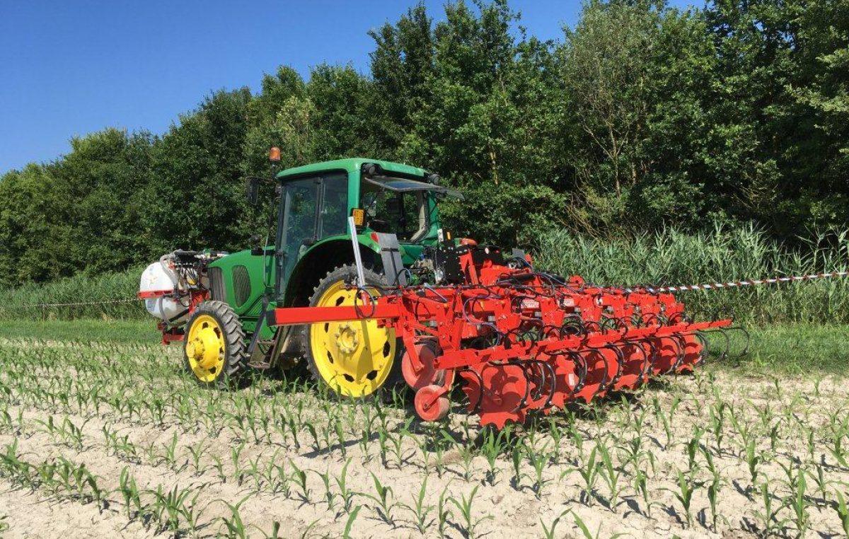AGROALIMENTARE VENETO IN ALTALENA, MA VALE 6,3 MILIARDI DI EURO (+7,5%)