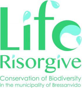 LIFE resurgence logo