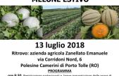 VISITA GUIDATA ALLE PROVE VARIETALI DI PORTINNESTO DI MELONE
